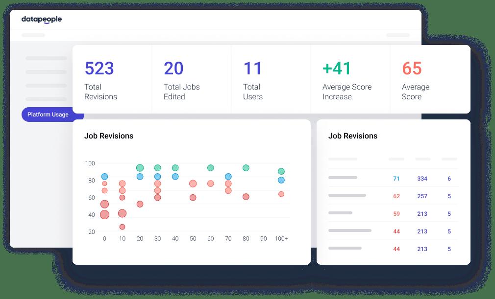 Datapeople Usage Report